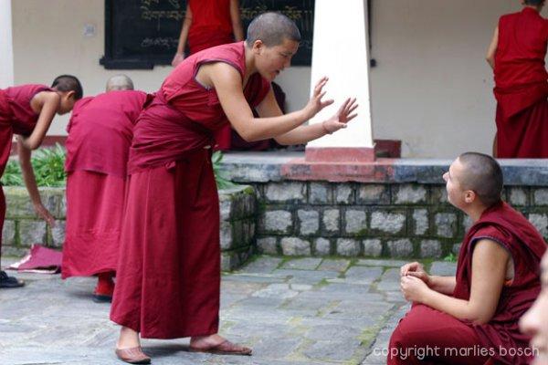 nonnen-dharamsala-010