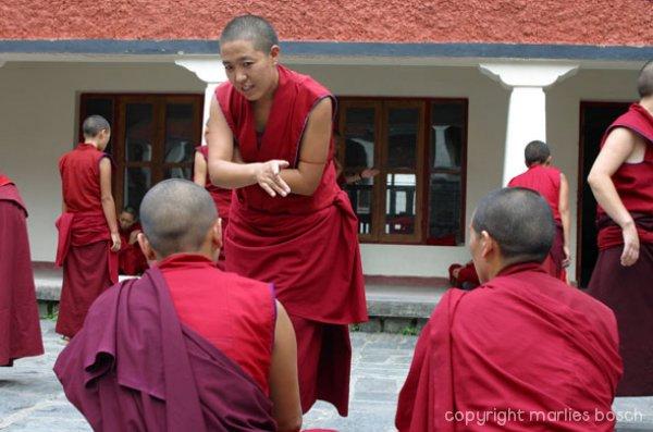 nonnen-dharamsala-012