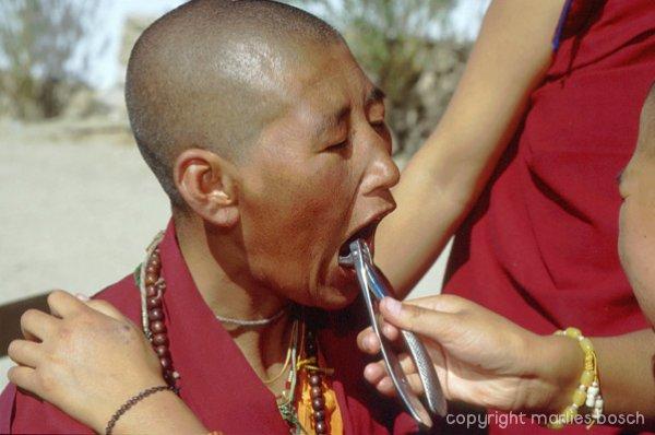 nonnen-ladakh-002