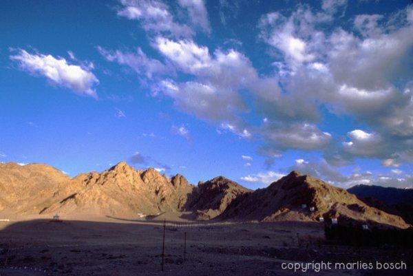 nonnen-ladakh-010