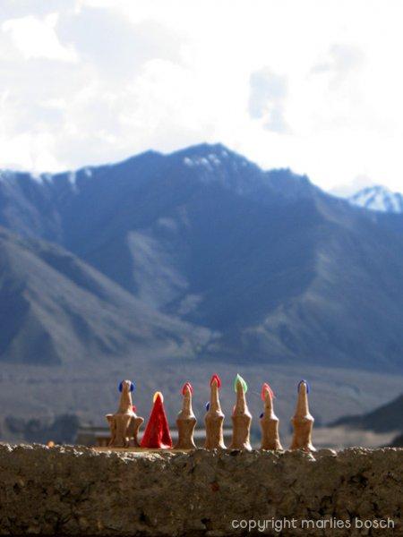 nonnen-ladakh-019