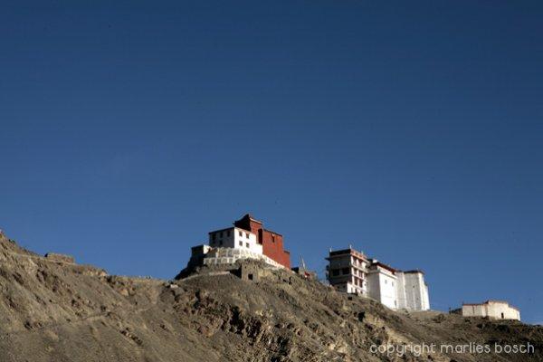 nonnen-ladakh-021