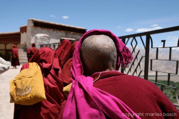 2010-nuns-ladakh-002