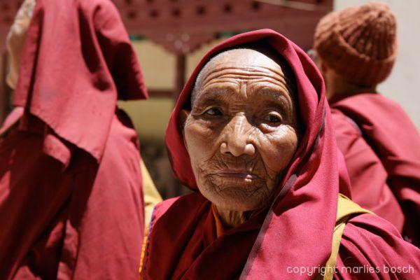 2010-nuns-ladakh-003