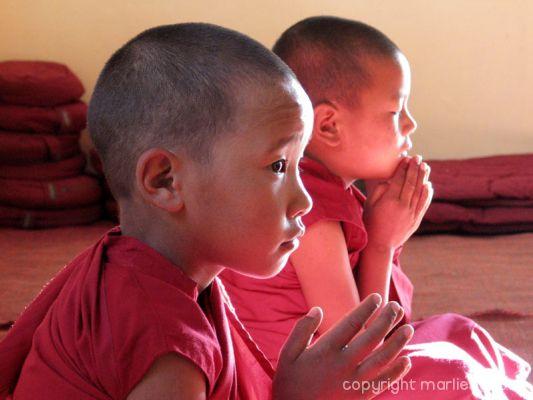 2010-nuns-ladakh-012