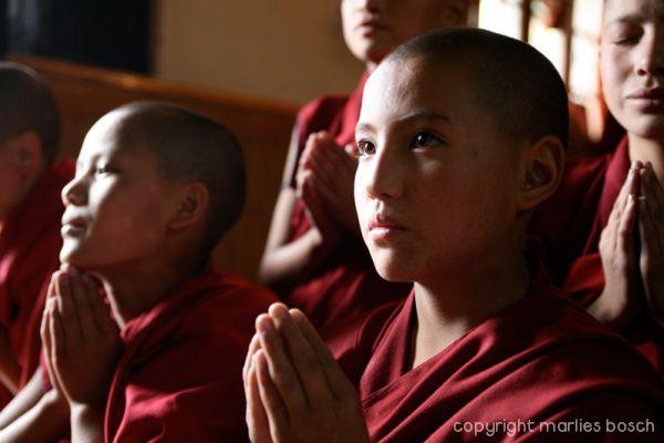 2010-nuns-ladakh-017