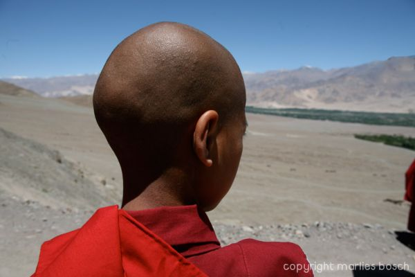2010-nuns-ladakh-018