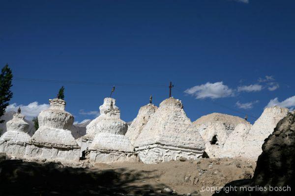 2010-nuns-ladakh-028