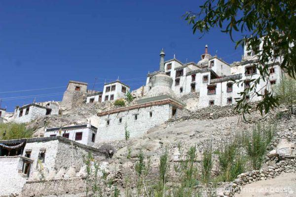 2010 Nonnen Ladakh